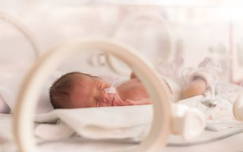 Premature baby: How to encourage bonding between preemies and their siblings