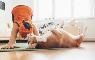 Dog Yoga is the brand new fitness trend that's the puppy-lovers dream
