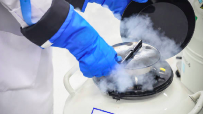 An Irish company is offering female employees the chance to freeze their eggs