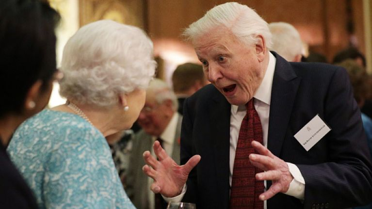 David Attenborough has a new BBC series coming out and it looks AMAZING