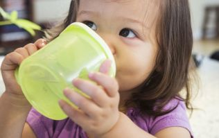 Here is why you should never microwave (or use the dishwasher on) sippy cups and bottles