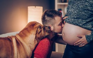 Turns out having a family pet can benefit kids before they are even born (says new study)
