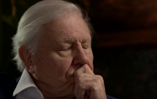 David Attenborough will speak for the people at next UN climate change conference