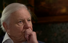 David Attenborough revealed he became emotional watching latest 'Dynasties' episode