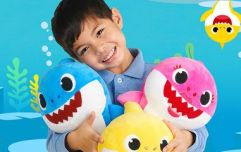 Baby Shark Live is coming to the Blanchardstown Centre next week!