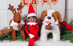 """The mum behind Elf on the Shelf: """"Being part of families creating Christmas memories is magical"""""""