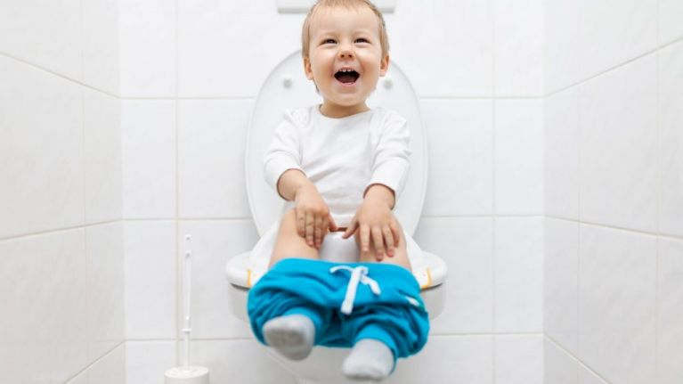 I just discovered 'two-seat' toilet seats for toddlers and I need one immediately
