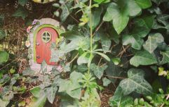 We put a Fairy Door in our back garden and it was for this very special reason