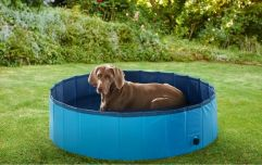 Lidl has released a doggy paddling pool and we're buying one ASAP