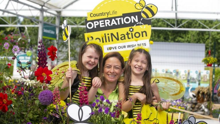 Glanbia's CountryLife Garden Centres are giving away free seeds to save the bees