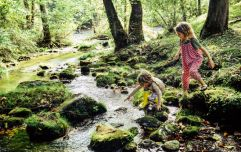 Children who grow up near nature turn into happier adults, says new study