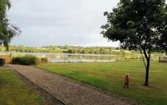 I took a mid-week break to Ferrycarrig with my family and it was our best family trip to date
