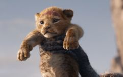 Disney's remake of The Lion King is set to roar onto ODEON screens tomorrow