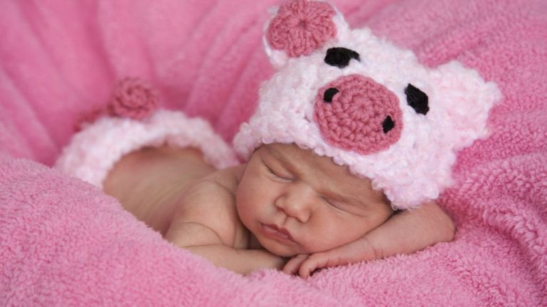 Chinese astrology says Year of the Pig is a great year to have a baby and here's why