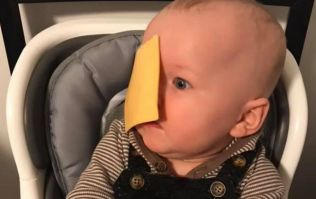 Parents are throwing cheese slices at their babies' heads and it's proving controversial