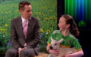 Leitrim farmer Stella stole the show on the Late Late last night