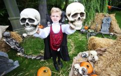 Tayto Park has announced a spook-tacular new Halloween event for kids