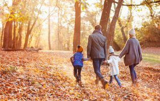 Start today! 13 autumn family traditions that your kids will love