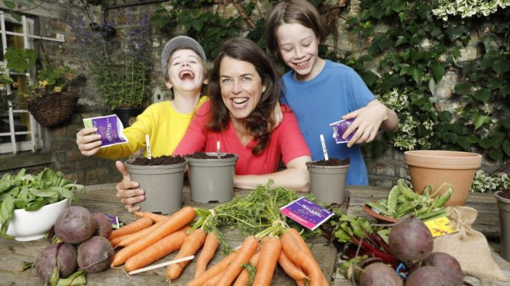 Energia and GIY are giving away free grow boxes so you can start a vegetable patch with your kids