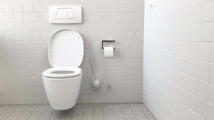 How one mum came up with a rather clever way to stop her boys peeing on the toilet seat