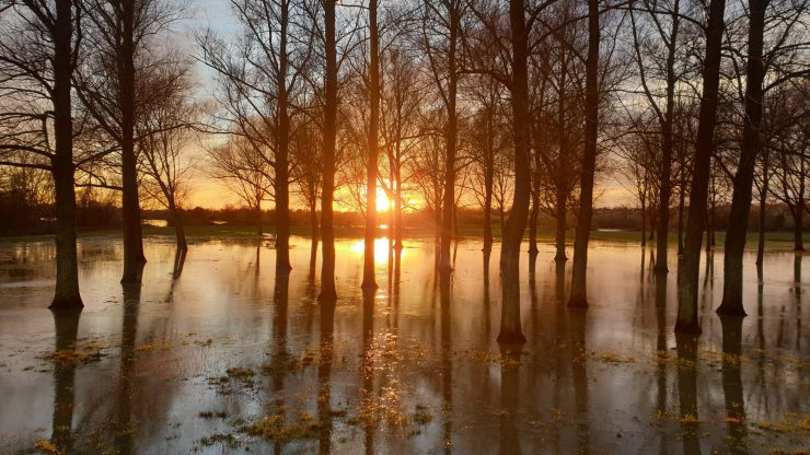 Ireland to become warmer and wetter due to climate change