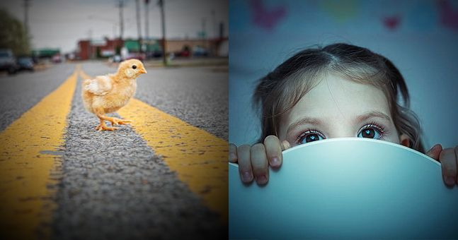 People are freaked out by creepy meaning behind 'Why did the chicken cross the road?' joke