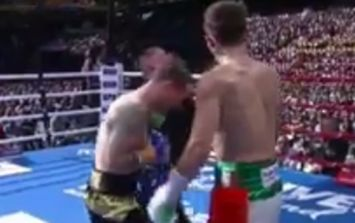 Michael Conlan basically told the ref to stop the fight after brutalising opponent