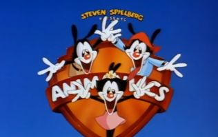 Great news '90s cartoon fans, Animaniacs is making a comeback