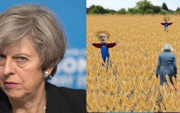 This Theresa May Fields of Wheat game is the naughtiest thing you will do today