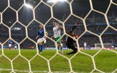 How Robbie Brady's goal against Italy at Euro 2016 inadvertently led to the death of a dog