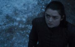 Maisie Williams offers out Liam Payne by adding him to Arya Stark's kill list
