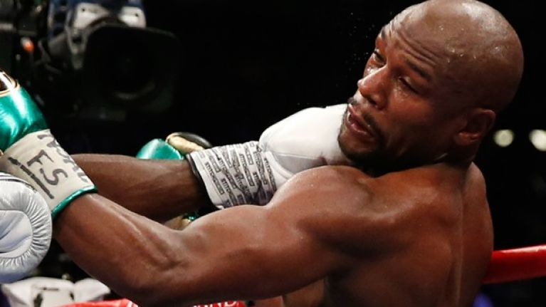 Why the Floyd Mayweather knockout rumour is definitely not true