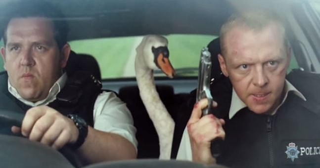 Image result for UK police detained Swan For Road Rage, Creating obstruction On Highway