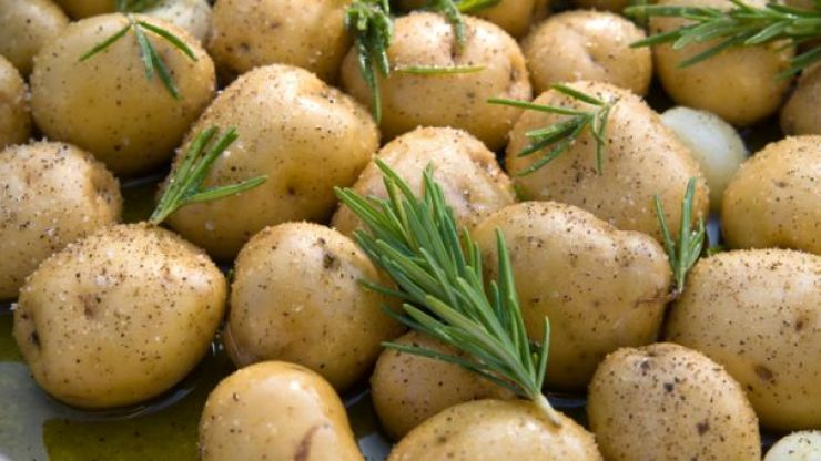 This man only ate potatoes for a year and this is what happened to his body