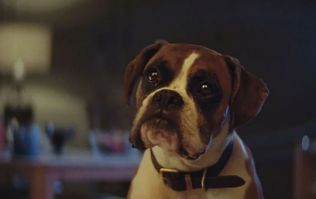 Details of this year's John Lewis Christmas advert have been revealed
