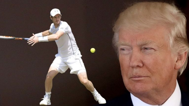 Andy Murray's trolling of Donald Trump has gone down a treat · News