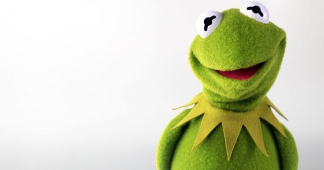 Pic Scientists Have Discovered Kermit The Frog In Real Life JOE - Real life kermit the frog discovered in costa rica
