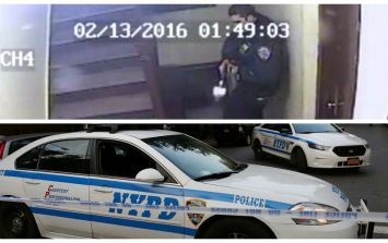 New York police officer filmed shooting 'friendly' dog on CCTV