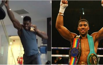 How Anthony Joshua's training turned him into a beast