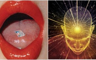 Study examines what really happens to your brain on LSD