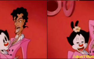 'Animaniacs' once slipped an absolutely filthy Prince joke into an episode