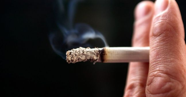 cigarette taxes essay The author cites backing for the warrant through the effects of cigarette taxes on smoking habits in new york specifically.