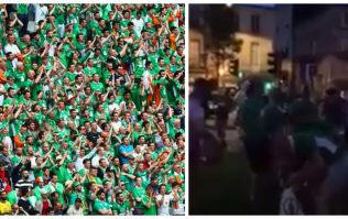 Watch Irish fans endear themselves to French public by cleaning up bottles
