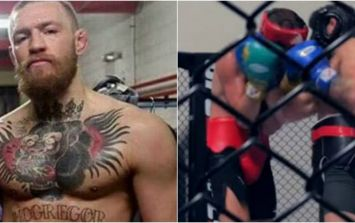 Conor McGregor looks strong and sharp sparring boxing champion ready for Nate Diaz
