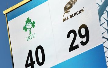Ireland's momentous win over the All Blacks cost one punter $100,000