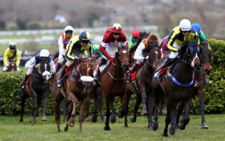 Quiz: Are these Cheltenham horse names real or fake?