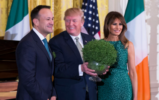 Exclusive interview with the bowl of shamrock that was presented to President Trump