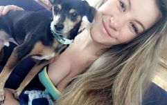 Heavily pregnant Miesha Tate fights off dog to protect her own