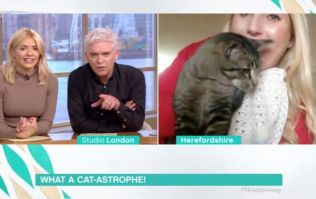 Holly Willoughby criticised for laughing through dead cat story