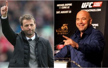 Turns out that Dana White has a little bit of Tim Sherwood in him